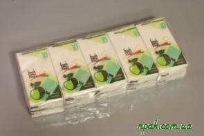 Носові хустинки 2- шарові з запахом (10 шт.) Польща