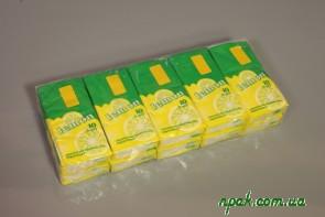 Носові хустинки 2-шарові з запахом (10 шт.) (Польща)